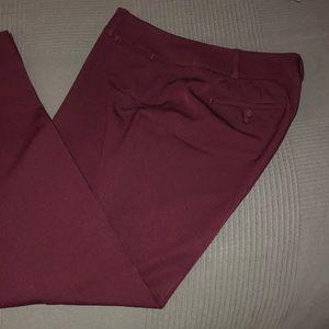 LOFT Maroon curvy dress pants